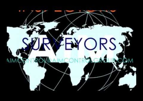 Marine & cargo Inspection surveyors